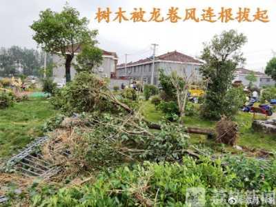 高邮龙卷风 扬州高邮地区遭遇龙卷风